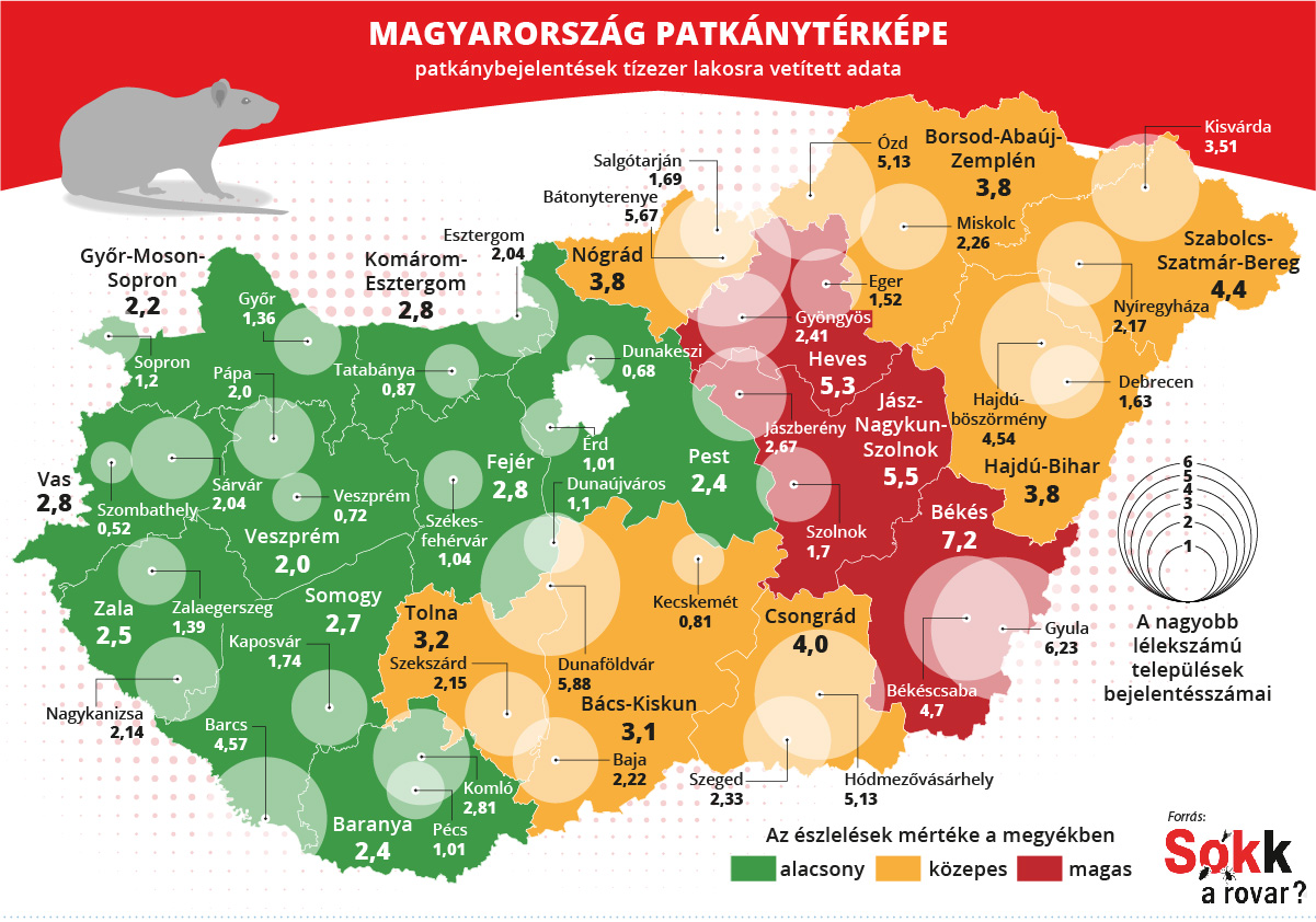A magyar patkánytérkép