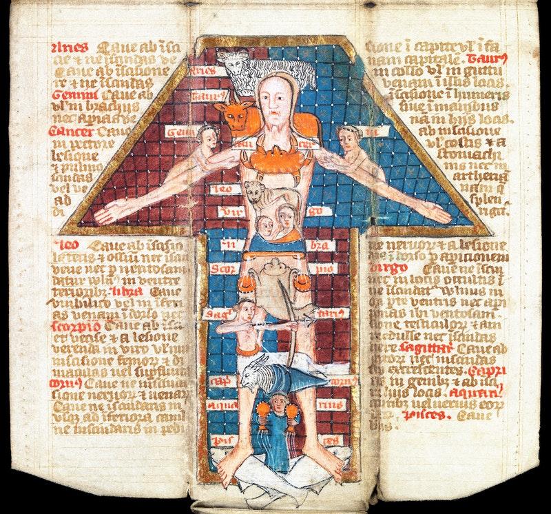 Egy Zodiákus Ember kb. 1417-ből (forrás: publicdomainreview.org)