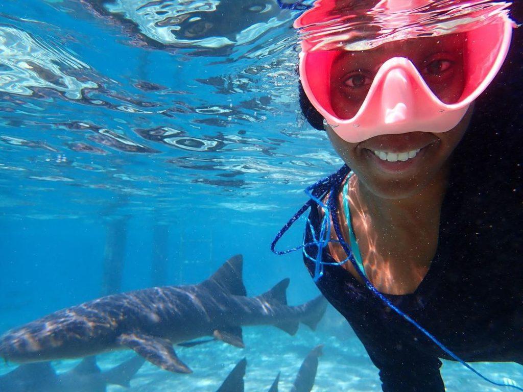 Hogy lesz valakiből cápakutató, és mi az, amit rosszul tudunk a cápákról?