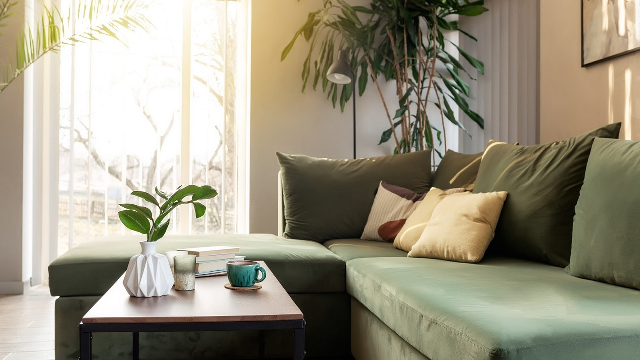 Strapabíró szobanövények