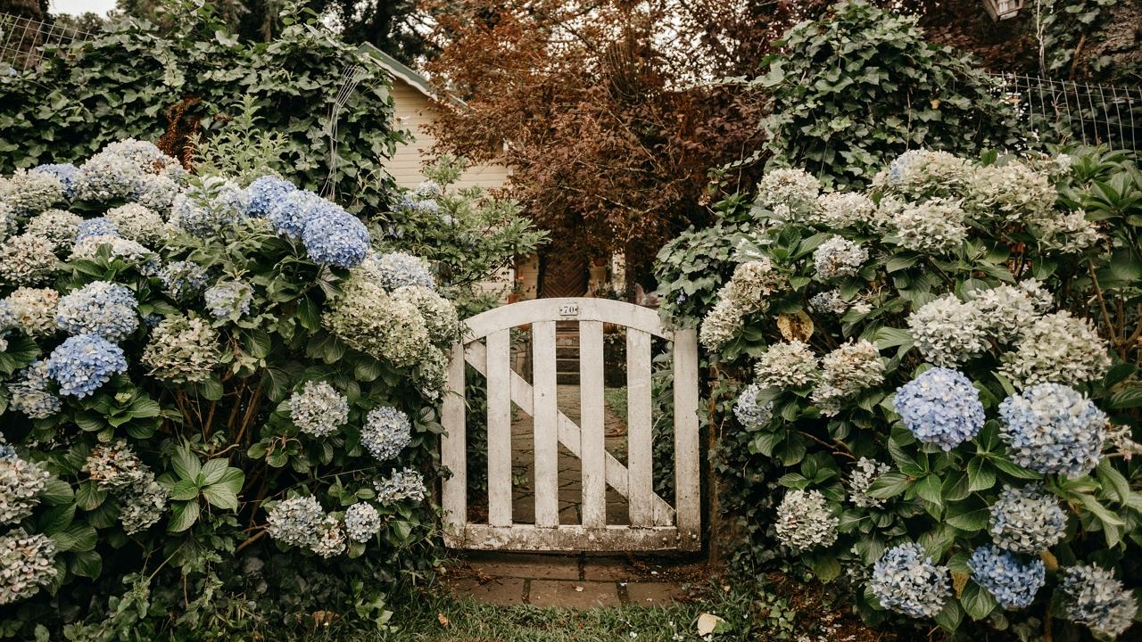 Fogakból készült 18. századi építményt talált egy férfi a kertjében