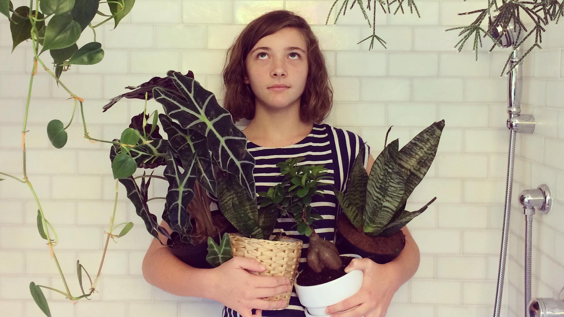 Mennyire bolygóbarát szobanövényeket tartani?