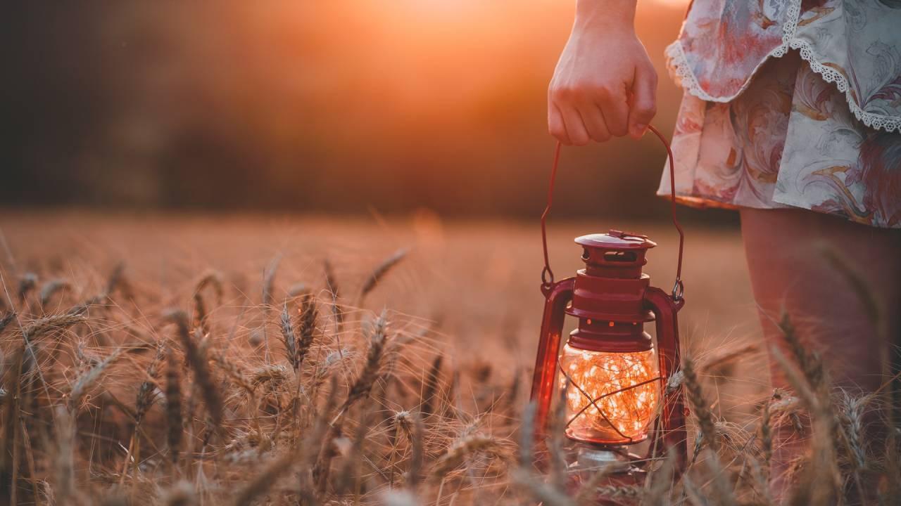nő lámpással búzamezőben