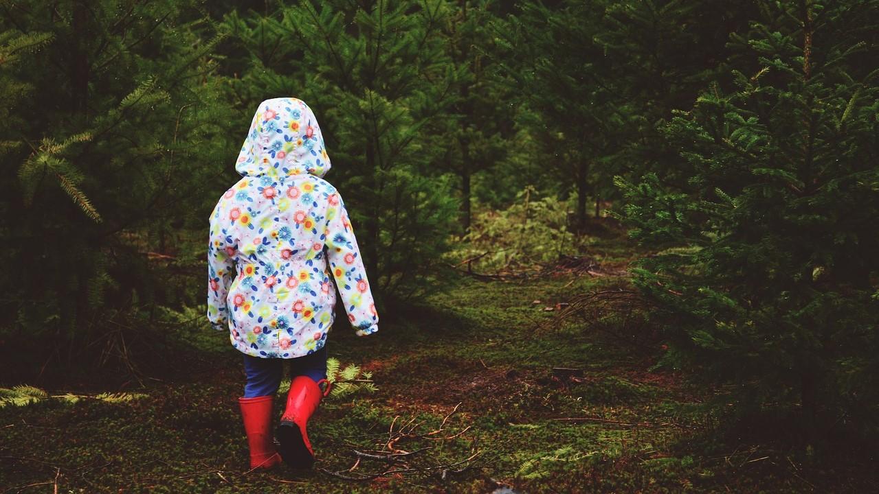 Kislány az erdőben.