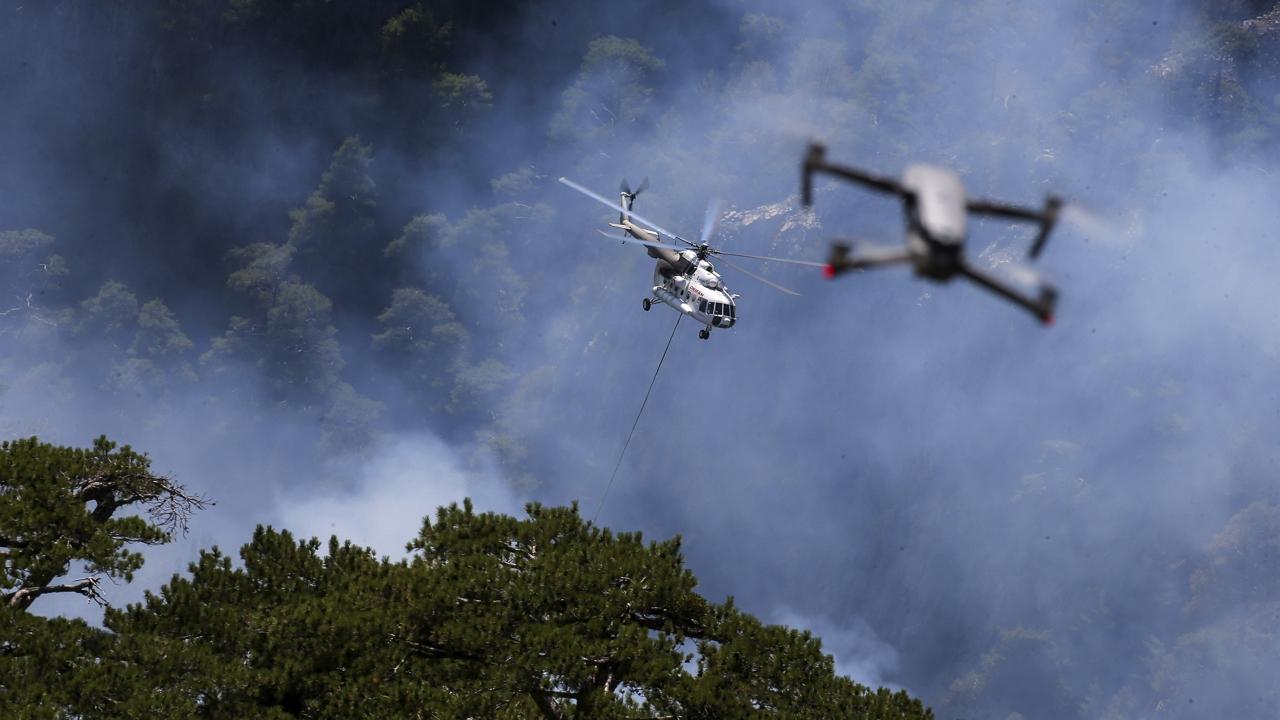 Elégett 4000 méhkaptár a törökországi erdőtüzekben, veszélybe került a fenyőméztermelés