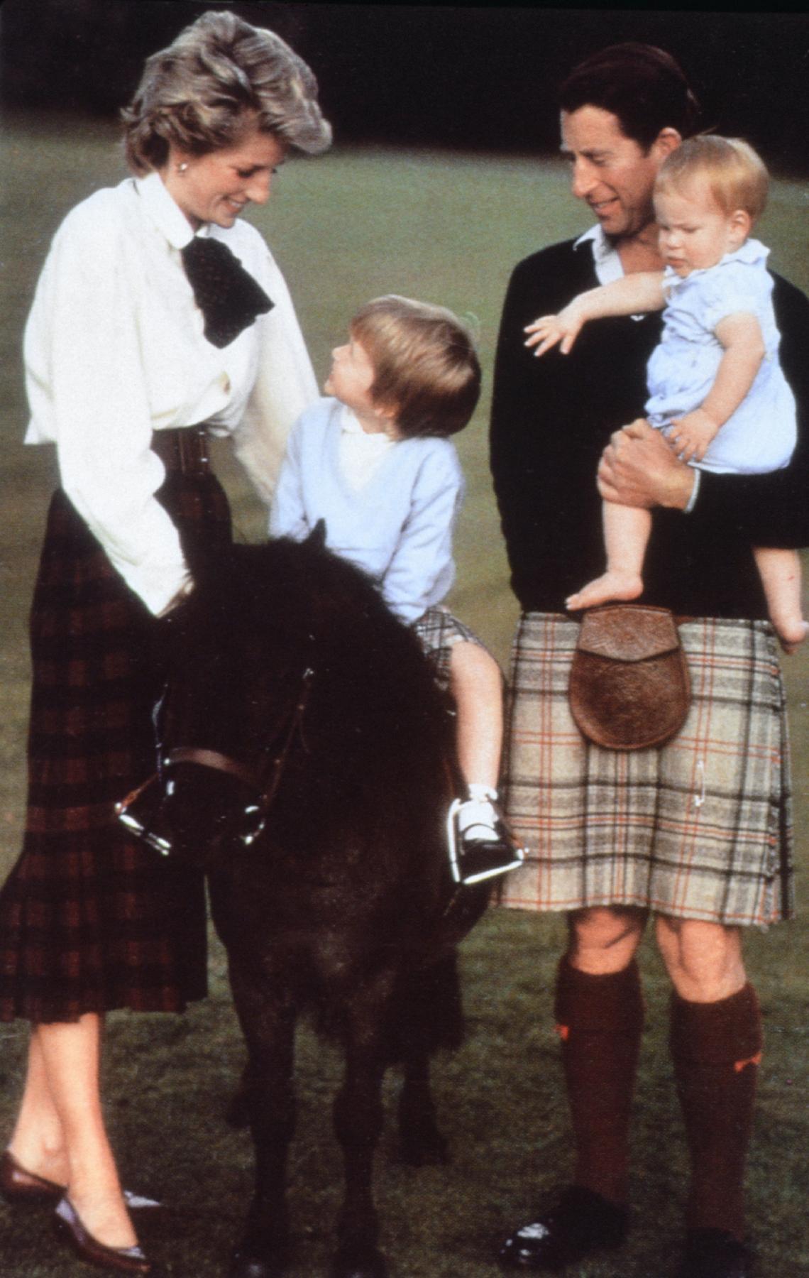 Diana hercegnő, Károly herceg és fiaiak