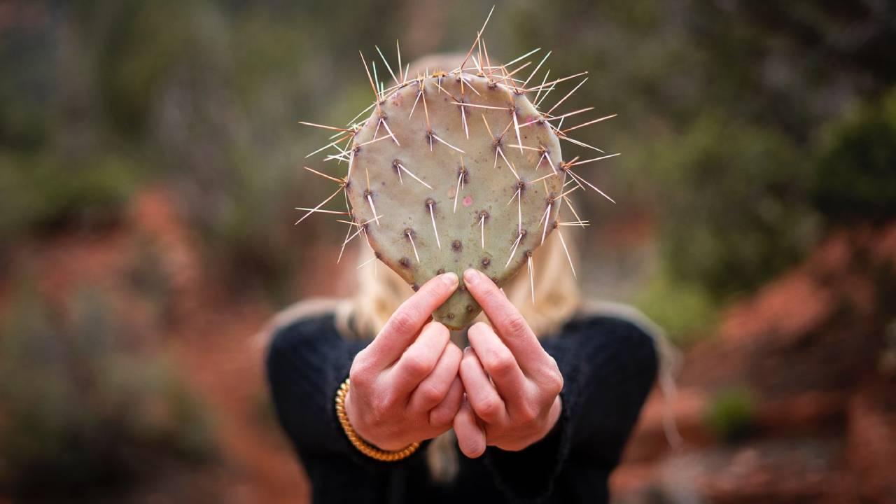 nő kaktusszal