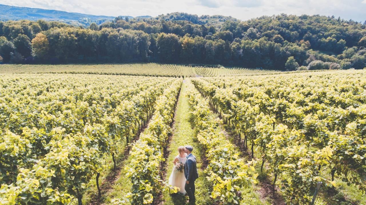 őszi esküvő szőlőben