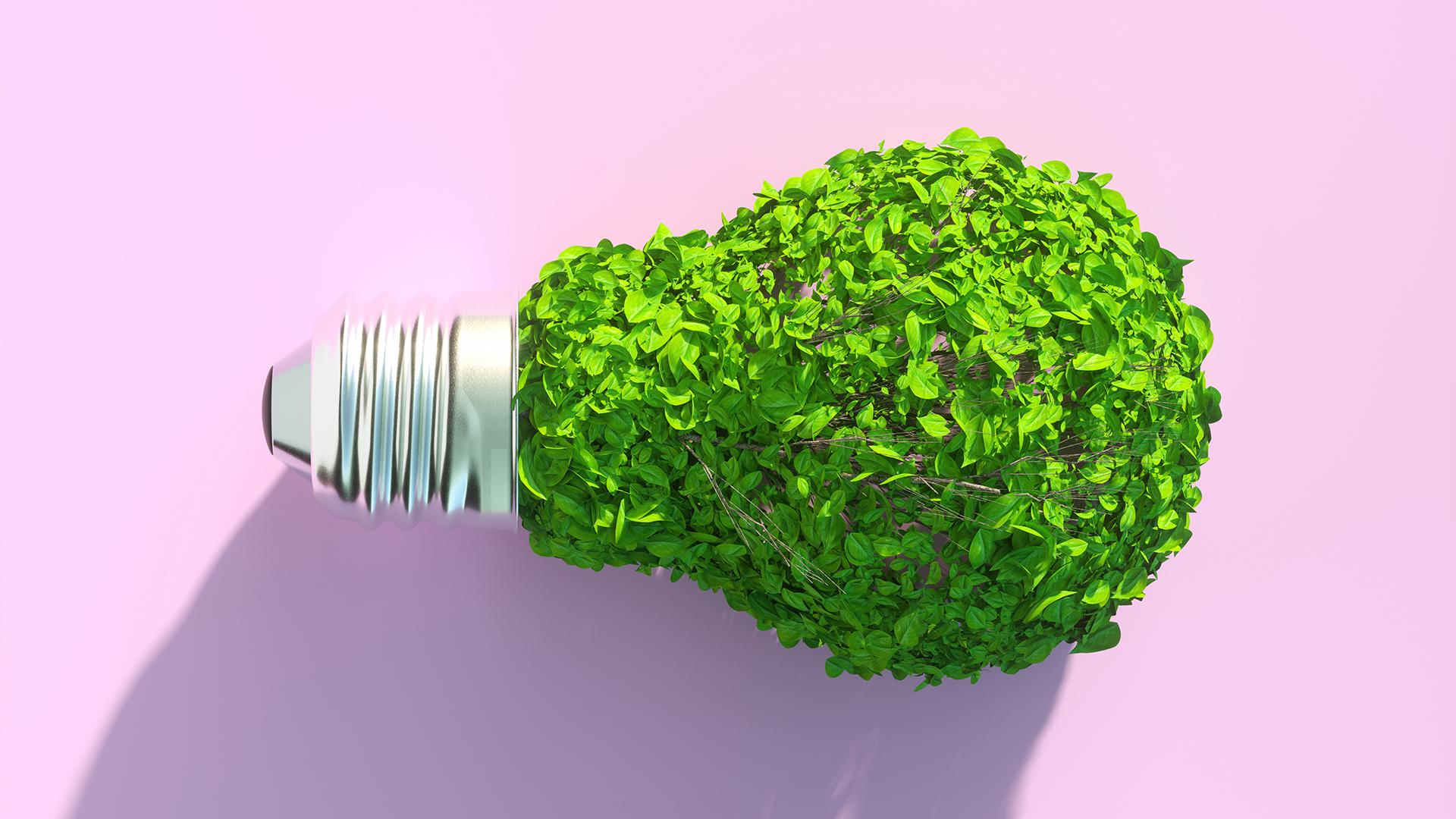 Világító növények válthatják a városi lámpaoszlopokat