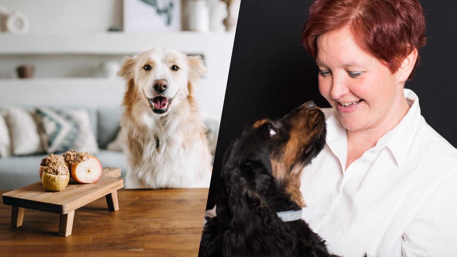 Mi a jó a kutyának: a táp, a nyers hús, házikoszt, vagy esetleg a zöldséggel etetés?