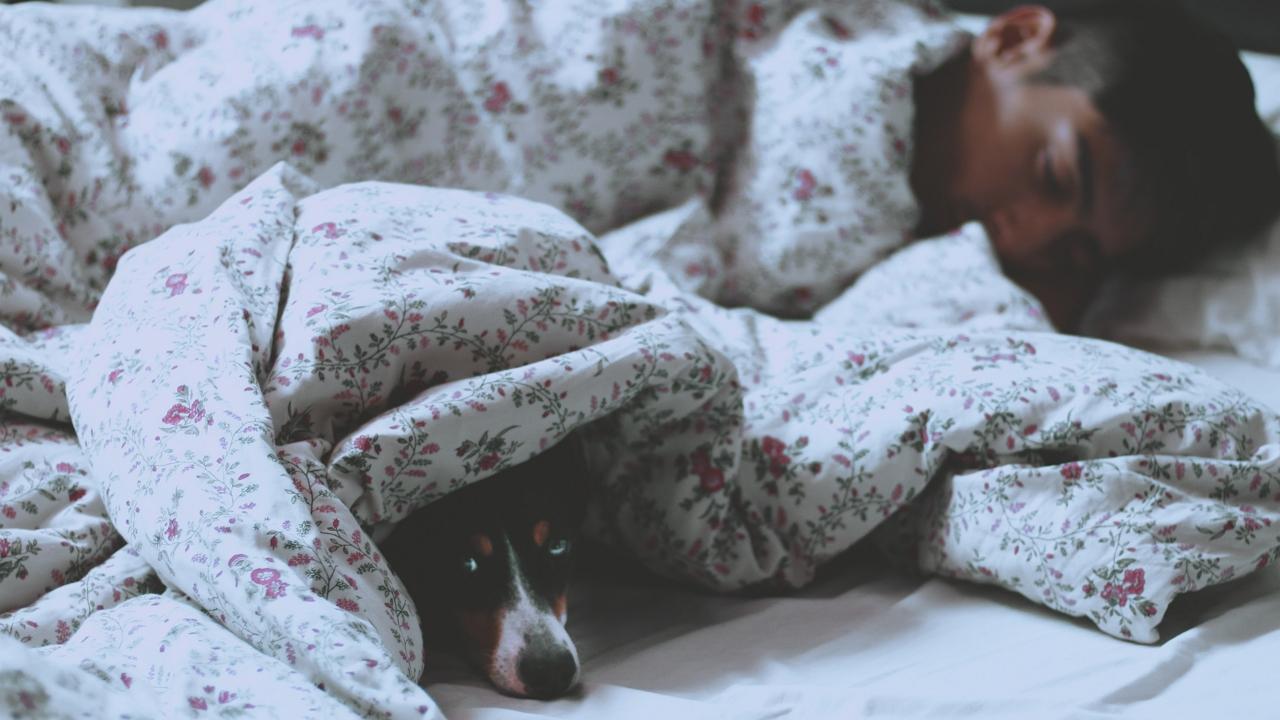 Ezért ébredsz meg hajnali 3-kor és kezd kattogni az agyad