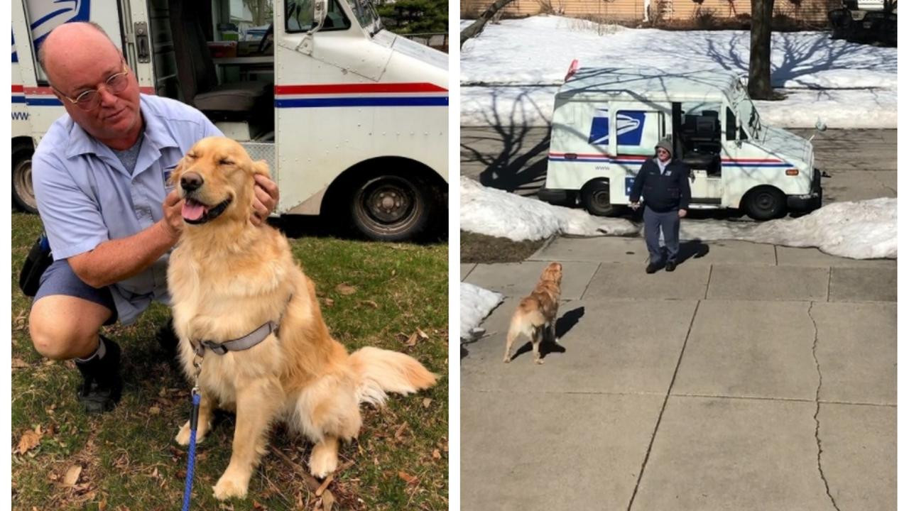 Kutya-postás barátság? Igenis létezik!