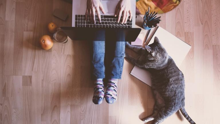 """Nagyon jó érzés elheveredni, ülni, vagy akár dolgozni is egy """"felmelegített"""" padlón télen (fotó: profimedia.hu)"""
