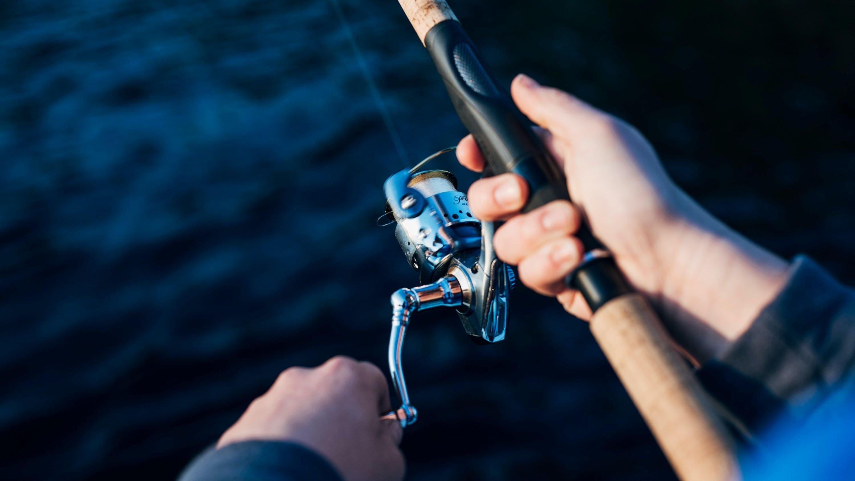 horgászat, hal, fogás